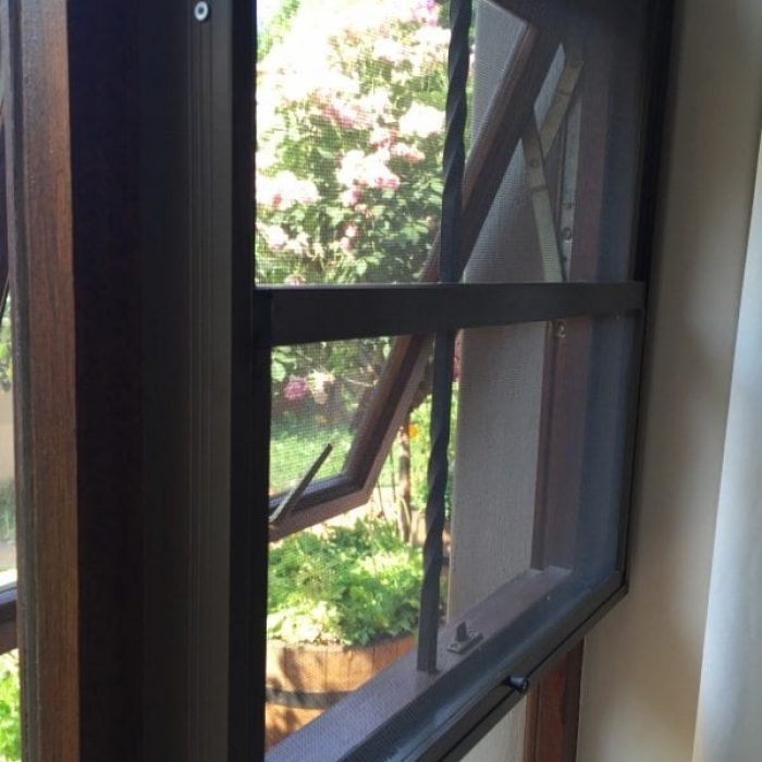 Bronze screen for window